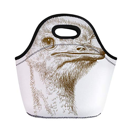 Antique Ostrich - Semtomn Lunch Tote Bag Emu Antique Engraving of Ostrich Head Farm Africa Ancient Reusable Neoprene Insulated Thermal Outdoor Picnic Lunchbox for Men Women