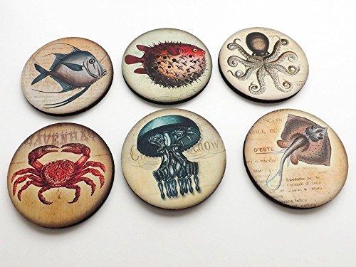 ocean-creatures-coasters-35-inch-neoprene-nautical-sea-puffer-fish-octopus-manta-ray-jellyfish