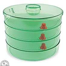 Biosta Sprouter with 3 levels -Green Tint