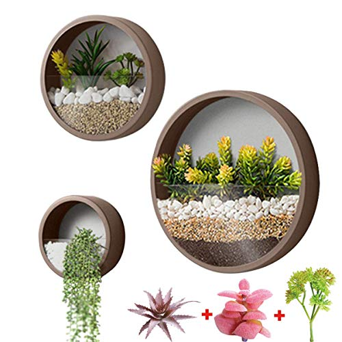 3 Pack Set Wall Planters Modern Wall Vase Succulent Planter Circle Flower Pot Metal Iron Indoor Vertical Container Wall Hanging Home Decoration Size S,M,L Coffee, Include 3 Artificial Succulent Plants
