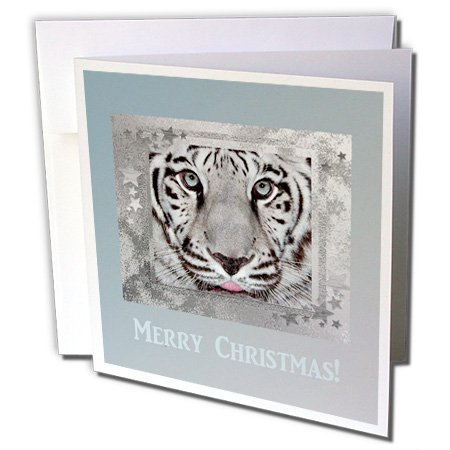 - White Tiger on Silver Blue Star Frame, Merry Christmas - Greeting Cards, 6 x 6 inches, set of 12 (gc_62748_2)