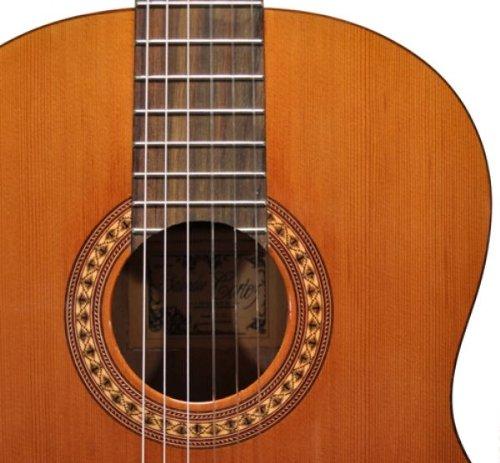 salvador cortez cc - 22 guitare