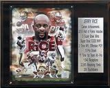 NFL Jerry Rice San Francisco 49ers Career Stat Plaque