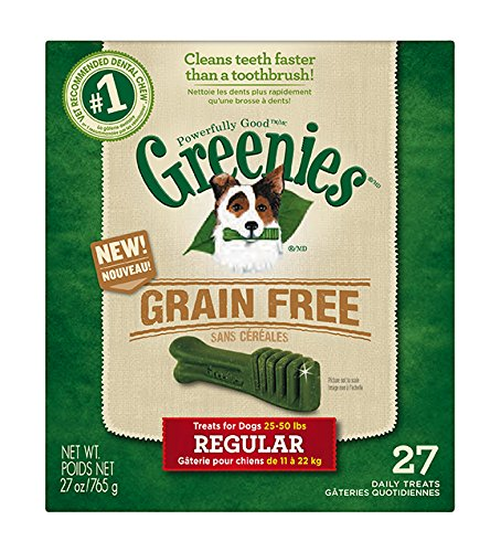 Greenies 10122363 Greenies