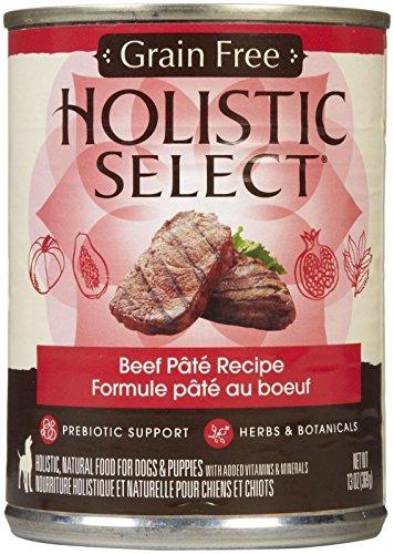Holistic Select Grain Free Beef Pate Recipe Canned Dog - 12x13 oz