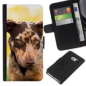 Whippet Saluki Big Dog Piebald Spots - la tarjeta de Crédito Slots PU Funda de cuero Monedero caso cubierta de piel Samsung Galaxy S6 EDGE