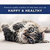 Natural Balance Indoor Ultra Premium Dry Cat