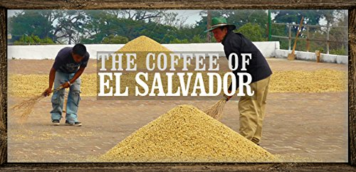El Salvador SHG Red Bourbon Buenos Aires Coffee Beans (Unroasted, Green Beans, 3 pounds Whole Beans)
