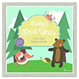 Babys First Year Woodland: A Non-Dated Keepsake Calendar (With Stickers)