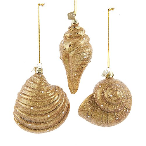 51gjc0%2BrV7L Amazing Seashell Christmas Ornaments