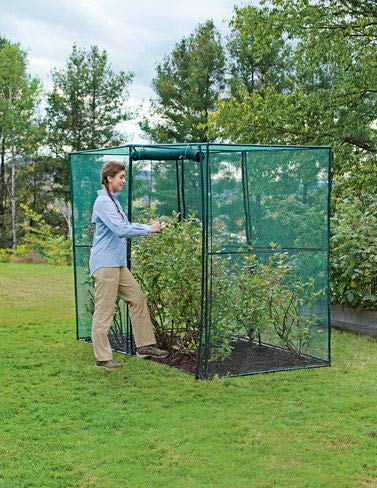 - Gardener's Supply Company Crop Cage, 4 x 8 Plant Protection Tent