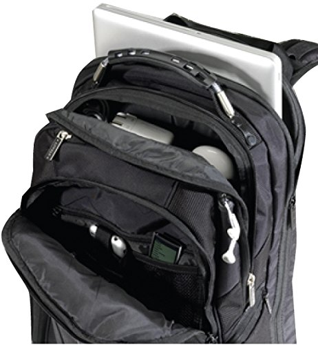 "Amazon.com: Level8 Atlas Black 15""-17"" Padded Laptop Backpack ..."