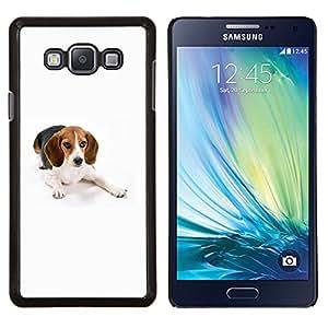 TECHCASE---Cubierta de la caja de protección para la piel dura ** Samsung Galaxy A7 ( A7000 ) ** --Beagle raposero perro blanco del animal doméstico
