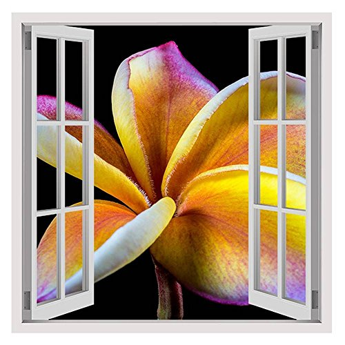 Alonline Art - Frangipani Flower Fake 3D Window Print On Canvas (Synthetic, UNFRAMED Unmounted) 31