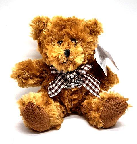Graduation Gift Class Of 2018 Follow Your Dreams Teddy (Teddy Bear Heart Charm)