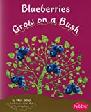 Blueberries Grow on a Bush, Mari Schuh, 1429661836