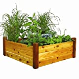 Rectangular Raised Garden Size: 19'' H x 48'' W x 48'' D