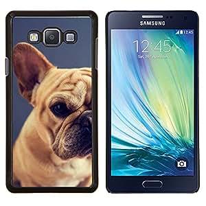 KLONGSHOP // Cubierta de piel con cierre a presión Shell trasero duro de goma Protección Caso - pug raza perro mascota cachorro terrier de Boston - Samsung Galaxy A7 A7000 //