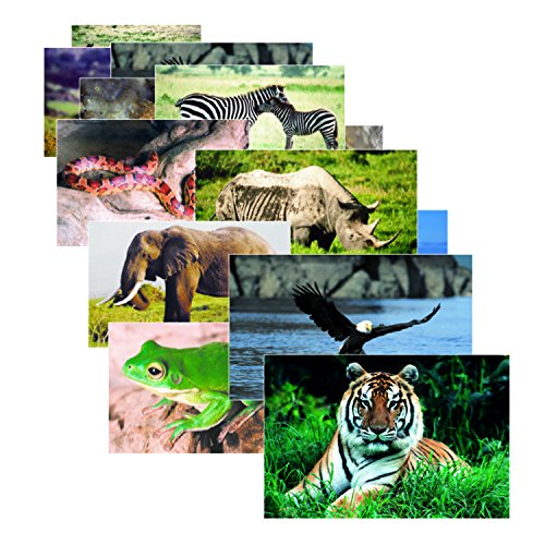 Stages Learning Materials SLM151 Wild Animals Real Life Learning Poster Set (Pack of 10)]()
