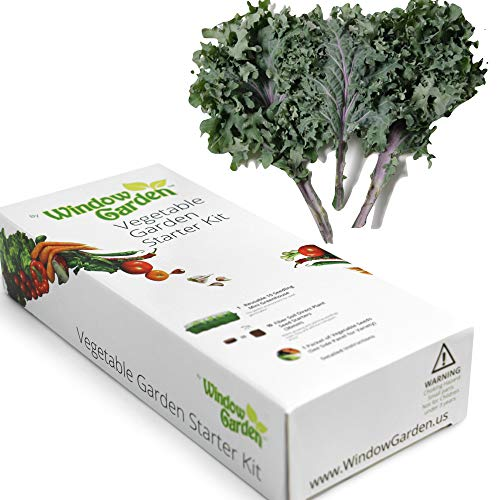 (Garden Starter Kit (Kale) Grow a Garden by Seed. Germinate Seeds on Your Windowsill Then Move to a Patio Planter or Vegetable Patch. Mini Greenhouse System Makes it Foolproof, Easy and Fun.)