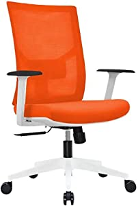 Ergonomic Multi Function Mesh Office Chair with Lumbar Support, Adjustable Armrest (Without Headrest, Orange)