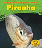 Piranha (A Day in the Life: Rain Forest Animals)