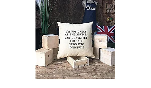 Home Decor Gift Friends TV Show Chandler Bing Sarcastic Comment Quote Pillowcase Gift for Dad Grad Gift Im Not Great at Advice Friends TV Show