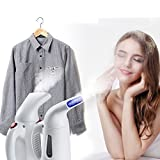 Panzl Handheld Garment Steamer Iron and Facial Steamer for Home and Travel (Colour May Vary)