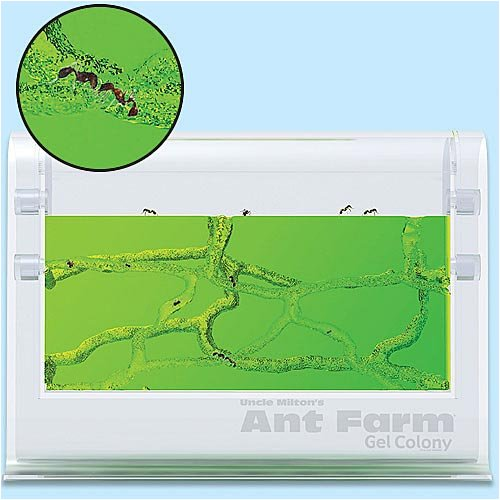Uncle Milton Ant Farm Gel Colony by Uncle Milton