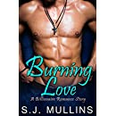 Burning Love: A Billionaire Romance Story (New Adult Romance Book 1)