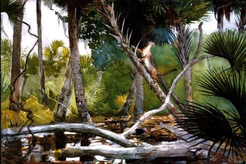 IN THE JUNGLE FLORIDA 1904 TROPICAL LANDSCAPE PAINTING BY WINSLOW HOMER REPRO