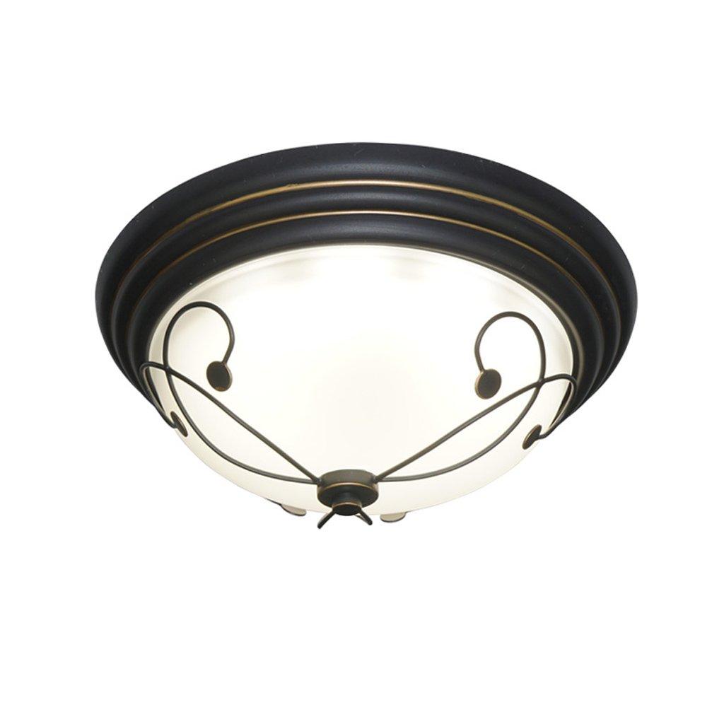 American Iron LED Schlafzimmer Wohnzimmer Deckenleuchte Eingang Flur Beleuchtung (Größe   33cm)
