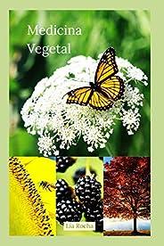 Medicina Vegetal: Um guia para você se tornar um médico das plantas