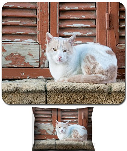 Animals Pane - Luxlady Mouse Wrist Rest and Small Mousepad Set, 2pc Wrist Support design IMAGE: 34590480 Beautiful white cat pet animal sitting on a window pane