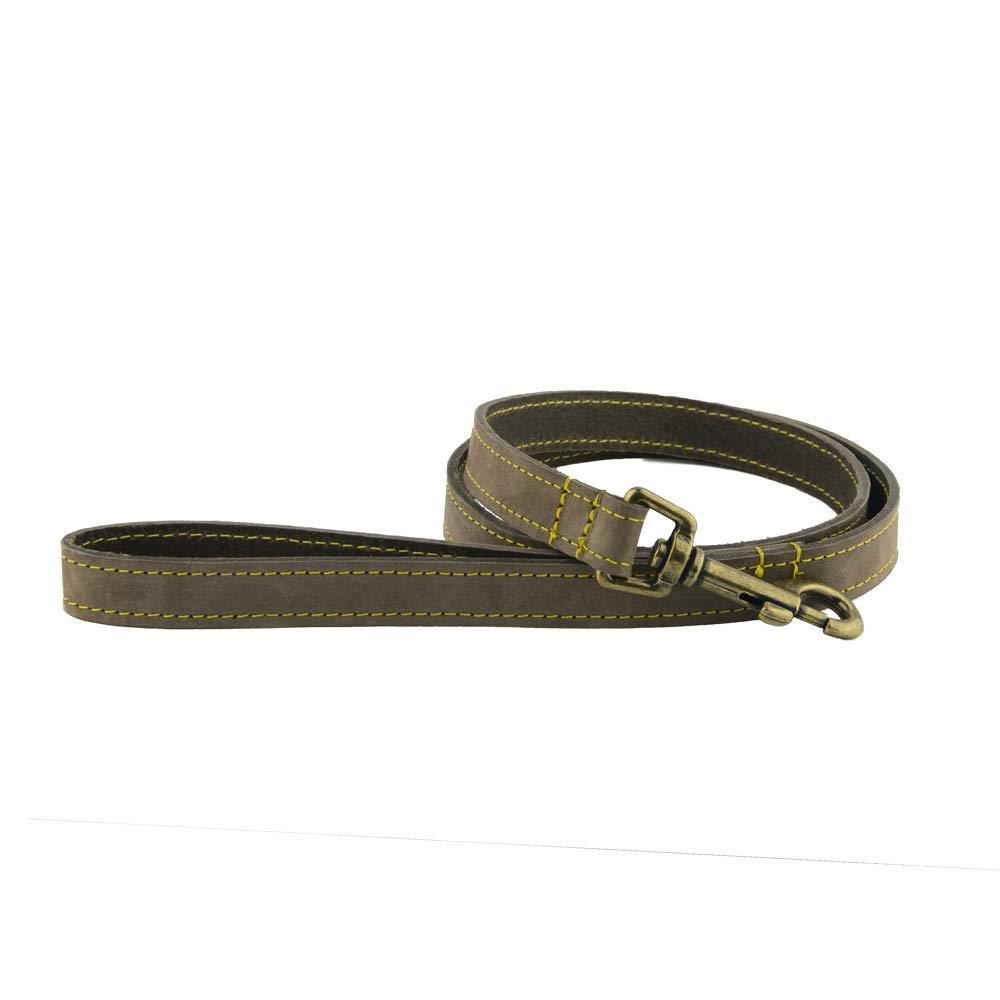 Ancol Personalisierte Hundehalsb/änder Whippet 2 Gr/ö/ßen 2 zu /ändernde Schriftarten 2 Timberwold Lederfarben Saluki Windhund Lurcher Deerhound