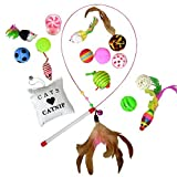 Downtown Pet Supply Best Value Cat Toys Variety Bundle Set Wand, Balls, Feathers, Mouses, Catnip, 16 35 Fun Interactive Cat Toys (16 PK)