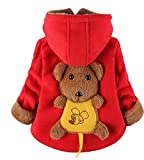 Yan's Baby Winter Coat Jacket Thick Wool Inside Kids Warm Winter Top (2-3 Year Old, Red)