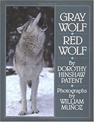 Gray Wolf, Red Wolf