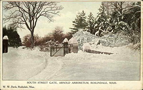 South Street Gate, Arnold Arboretum Roslindale, Massachusetts Original Vintage - Arnold Gate