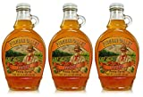 Pioneer Valley Gourmet Apricot Fancy Syrup 11.5 oz. - 3 pack