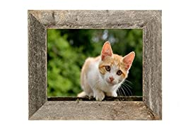 BarnwoodUSA Rustic 8.5 by 11 Picture Frame With 2 Inch Wide Molding - 100% Reclaimed Wood