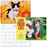 "2018 Love Those Cats Wall Calendar - 12"" x 9"", bookstore quality, spiral bound"