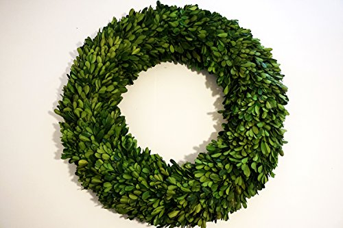 Preserved Boxwood Wreath 14 in by Tradingsmith