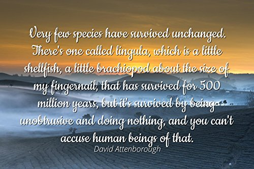 David Attenborough - Famous Quotes Laminated POSTER PRINT 24x20 - Very few species have survived unchanged. There's one called lingula, which is a little shellfish, a little brachiopod about the size