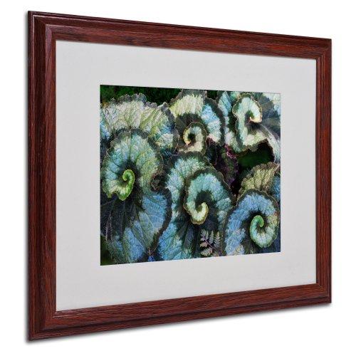 Escargot Begonia Matted Framed Art by Kurt Shaffer in Wood Frame 16 by 20Inch