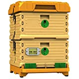 Apimaye 10 Frame Langstroth Insulated Bee Hive Set with Plastic Handy Frames (Original Orange Top)