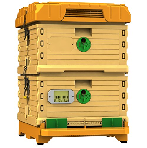 Apimaye 10 Frame Langstroth Insulated Bee Hive Set with Plastic Handy Frames (Original Orange (Hive Kit)