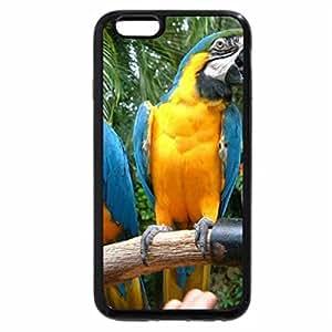 iPhone 6S Plus Case, iPhone 6 Plus Case, ARA PAROTS