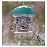 Wild Bill's Non-Electric Feeding Frenzy Bird Feeder For Sale
