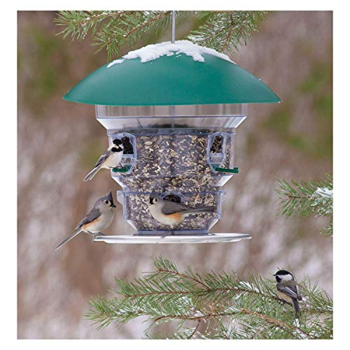 Wild Bill's Non-Electric Feeding Frenzy Bird Feeder For Sale